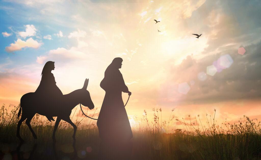 Maria peregrina